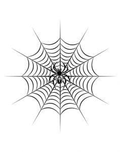 Spinnennetz Tattoo