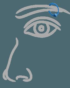 Augenbrauenpiercing